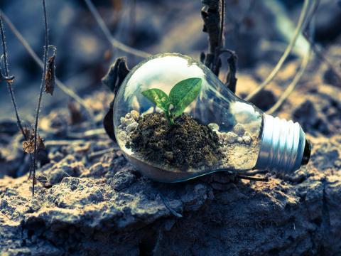 Elektro-Auto Auto Till Umwelt Nachhaltigkeit