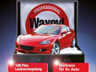 Lackversiegelung Waxoyl 100 Plus Muenchen